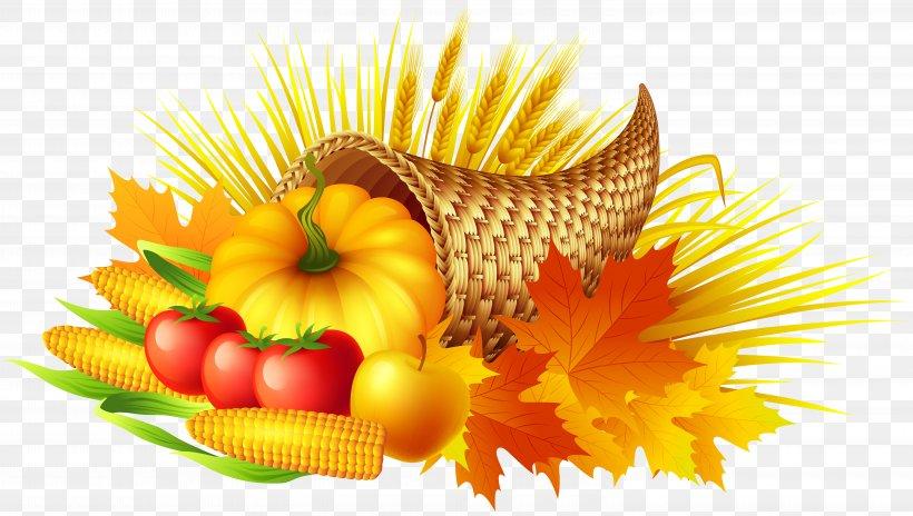 Thanksgiving Cornucopia Pumpkin Pie Clip Art, PNG, 6000x3398px, Cornucopia, Blog, Chrysanths, Flower, Food Download Free