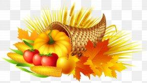 Thanksgiving Cornucopia Transparent Clip Art Image - Thanksgiving Cornucopia Pumpkin Pie Clip Art PNG