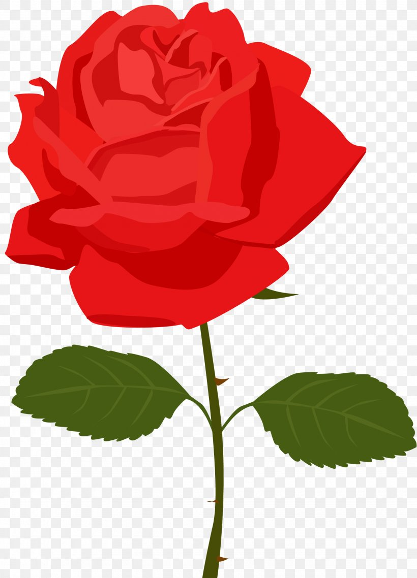 Rose Flower Clip Art Png 1950x2707px Rose Blog Cut Flowers