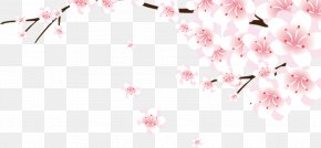 Chinese Style Fresh Peach Shining Bright Peach Pink Decoration Decoration - Cherry Blossom Download Computer File PNG