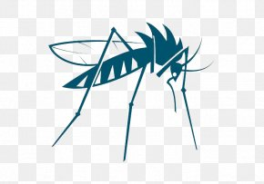 Mosquito - Mosquito Insect Vector Bed Bug PNG