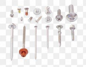 Metal Screw - Fastener Self-tapping Screw Stainless Steel ISO Metric Screw Thread PNG