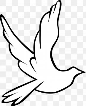 Dove Images Pictures - Holy Spirit In Christianity Doves As Symbols Drawing Clip Art PNG