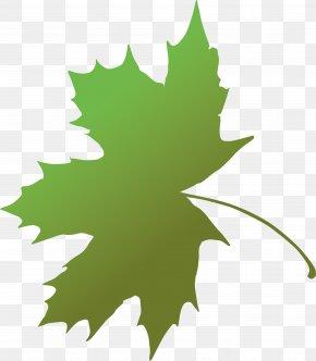Metal Leaves - Maple Leaf Green Grape Leaves Plant Stem PNG
