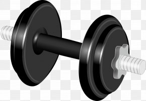 Hantel - Dumbbell Physical Exercise Weight Training Clip Art PNG