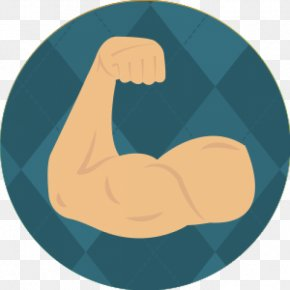 Strength - Anatomy Of Movement Muscle Arm Human Body PNG