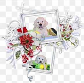 Puppy - Puppy Centerblog Christmas Message PNG