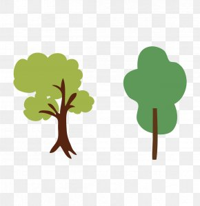 Tree - Tree Illustration PNG
