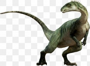 Dinosaur - Dinosaur Tyrannosaurus Clip Art PNG
