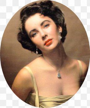 Actor - Elizabeth Taylor Cat On A Hot Tin Roof Actor Classical Hollywood Cinema Film PNG