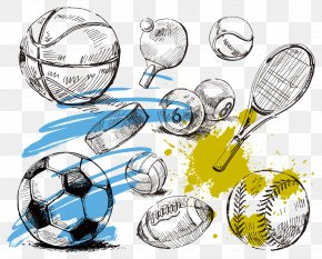Sports Equipment Collection Vector - Sport Ball Illustration PNG