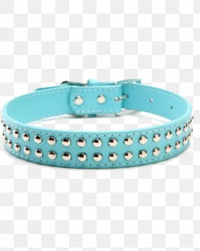 Dog Collar - Dog Collar Turquoise Leather PNG