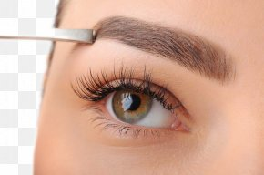 Eye Closeup - Eyebrow Threading Waxing Flaunt Salon Eyelash PNG