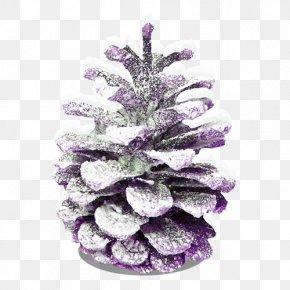 Christmas Snow Cones - Conifer Cone Christmas Snow PNG