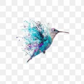 Watercolor Hummingbird - Hummingbird Tattoo Art Painting PNG