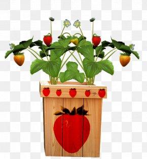 Strawberry Pots - Fruit Pot Flowerpot Strawberry PNG