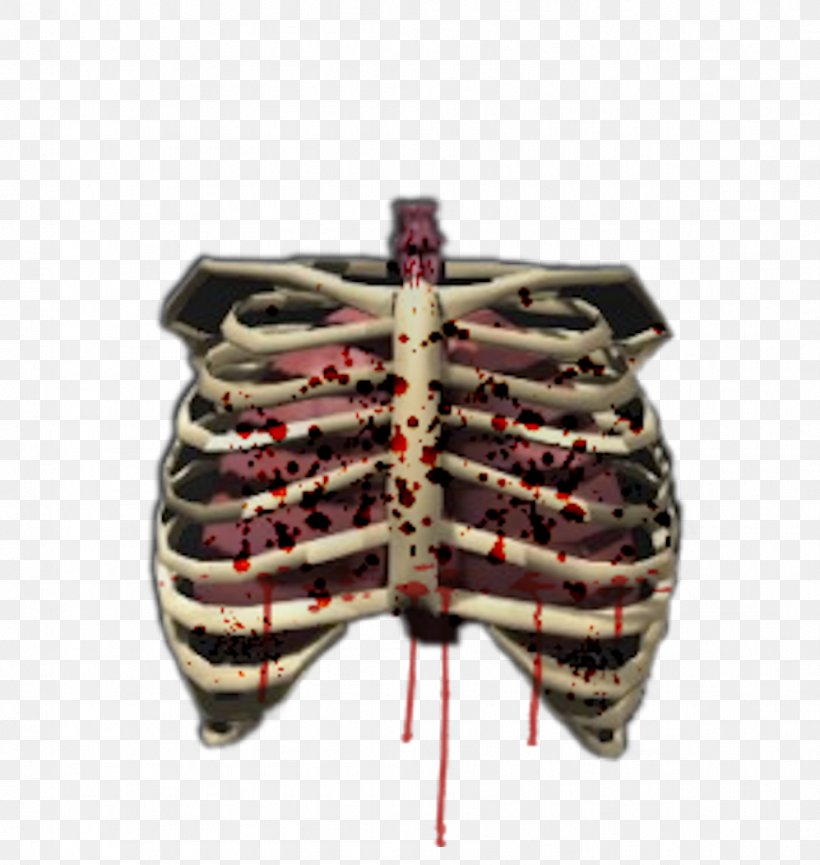Human Skeleton Bone Rib Cage Human Body, PNG, 997x1052px, Watercolor, Cartoon, Flower, Frame, Heart Download Free