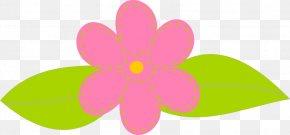 Transparent Floral Cliparts - Petal Leaf Pink Circle Pattern PNG