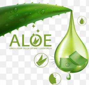 Aloe Vera Skin Care Ad Element - Aloe Vera Euclidean Vector Skin Care PNG
