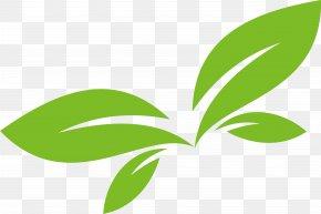 Green Leaf Vector Logo Design - Leaf Logo Euclidean Vector PNG