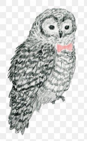 Owl - Crxe8me Brxfblxe9e Milk Couch Dinner Kabaya PNG