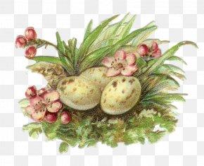 Easter Clip Art Easter Bunny Free ContentEaster - Lent PNG