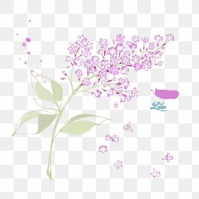 Vector Lilac - Petal Flower Syzygium Aromaticum PNG