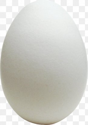 Egg Image - Chicken Egg Chicken Egg Omelette World Egg Day PNG