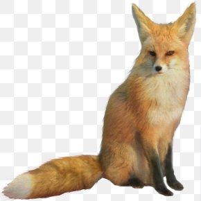 Fox - Star Fox Fox McCloud PNG