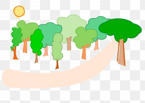 Free Scenery Pictures - Forest Free Content Website Clip Art PNG