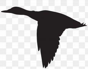 Duck Flying Silhouette Clip Art Image - Duck Mallard Clip Art PNG