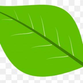 Leaf - Leaf Product Design Plant Stem Font PNG