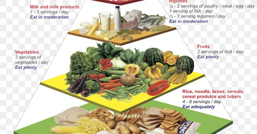 Malaysian Cuisine Nutrient Food Pyramid Nutrition Png 1000x525px
