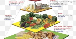 Health - Malaysian Cuisine Nutrient Food Pyramid Nutrition PNG