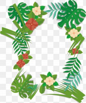 Green Summer Plant Borders - Plant Leaf Euclidean Vector PNG
