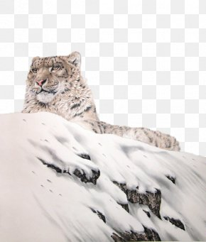 Snowflakes On The Snow Lying On The Leopard - The Snow Leopard Tiger Lion PNG