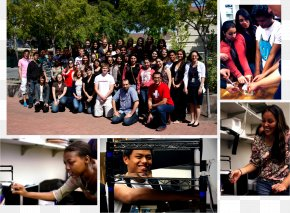 Student - Stanford Summer Session | High School Summer College Student National Secondary School Elementary School PNG