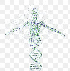 DNA - Genetics Genetic Testing Genomics DNA PNG