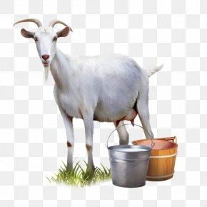 Goat's Milk - Goat Milk Goat Milk Automatic Milking PNG