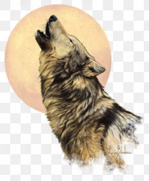 United States - The Call Of The Wild United States Painting Drawing Dog PNG
