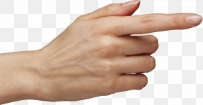 Hands Hand Image - Finger Hand PNG