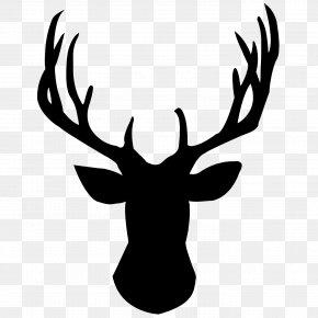Deer Head Pic - White-tailed Deer Reindeer Silhouette Clip Art PNG