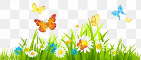 Grass Ground With Flowers And Butterflies Clipart - Flower Clip Art PNG