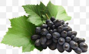 Large Grapes Clipart - Grape Clip Art PNG