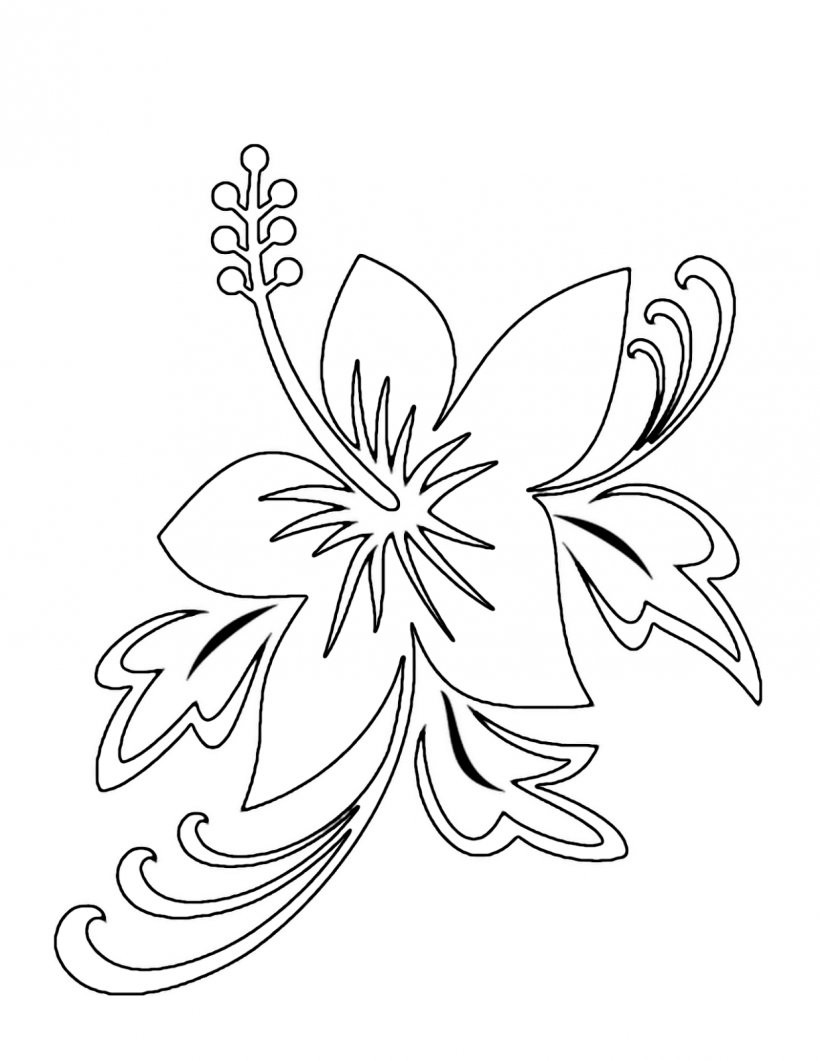 Drawing flower pencil sketch png 1236x1600px drawing