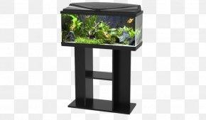 Light - Aquarium Lighting Aquarium Filters Aquariums PNG