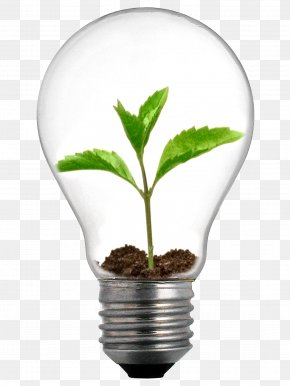 Energy-saving - Incandescent Light Bulb Grow Light Lighting LED Lamp PNG