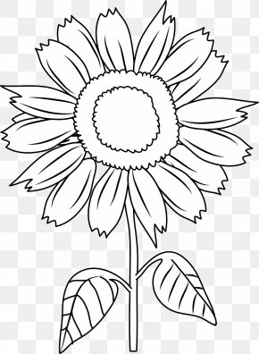 Coloring Pages For Kids - Black And White Download Clip Art PNG