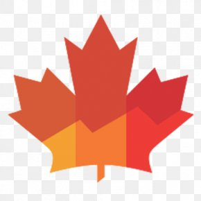 Canada - National Flag Of Canada Day Maple Leaf Vector Graphics PNG