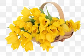 Flower - Flower Bouquet Tulip Yellow Stock Photography PNG